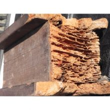 termite-damage-to-support-post