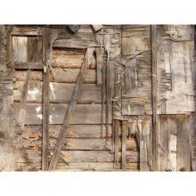 wooden structure termite karachi pest control